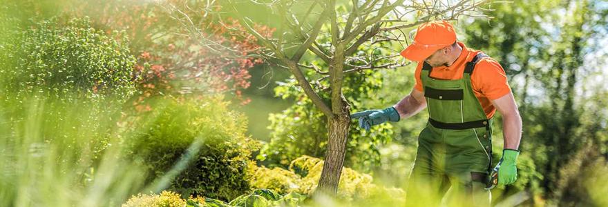 réaliser vos travaux d'aménagement de jardin